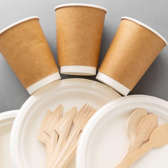 כלים חד פעמיים